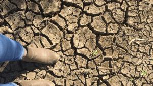 agriculture loans australia